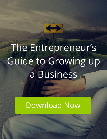 The Entrepreneur's Guide to Growing up a Business