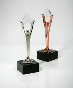 PaySimple Silver Bronze Stevie Award