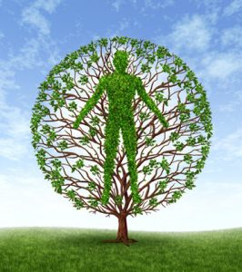 personal growth tree